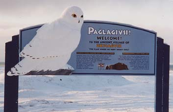 Welcome to Nome.jpg